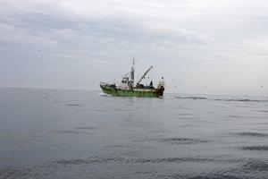 fiskebaad