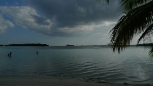 Boca Chica - strand, palmer, containerhavn