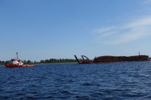 Der bliver produceret en del træ her i Sverige. Her er en transport på vej gennem Luleå skærgård.