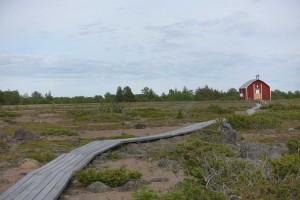 På Sandskär er der anlagt brædde-stier rundt på øen. Her ses stien op til kirken.